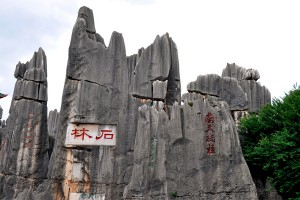 Stone_Forest1